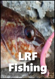 LRF Light Rock Fishing Tackle